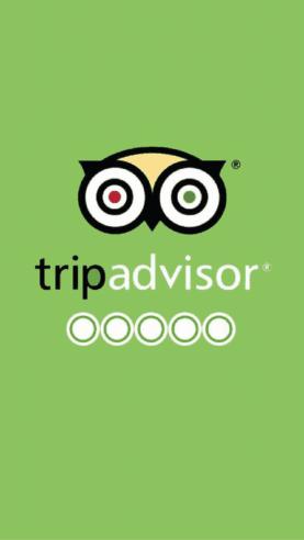 Tripadvisor Und Die Online Reputation Des Hotels